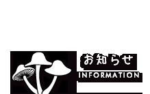 お知らせ INFORMATION